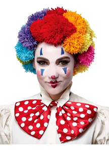 Ranibow Clown Wig