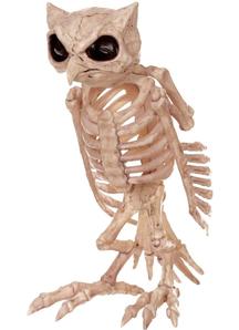 Skeleton Owl Props