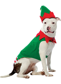 Large Dog Elf Costume