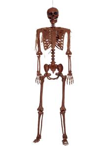 Pose-N-Stay Skeleton Prop