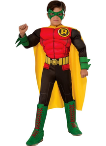 Robin 3D Costume For Children