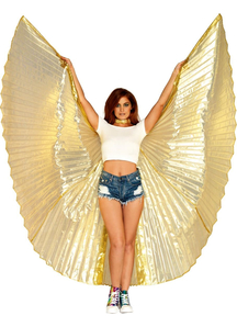 Metallic Wings 360 2