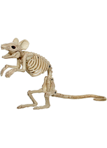 Mouse Standing Skeleton