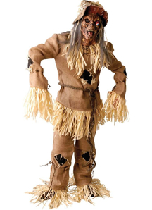 Scarecrow Halloween Adult Costume
