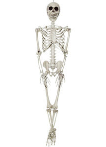 Skeleton 36 inches Prop