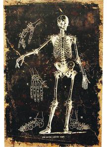 Skeleton Canvas Frame