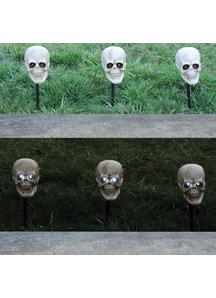Skull Lighted Props