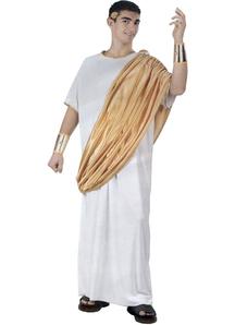 Gaius Julius Caesar Adult Costume