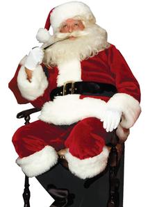 Royal Santa Adult Costume