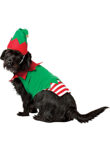 Elf Dog Costume for small dogs