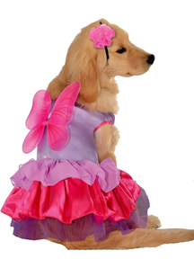 Fairy Pet Costume