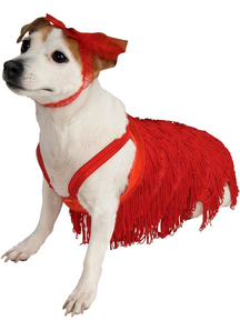 Flapper Pet Costume