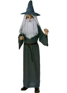 Gandalf The Hobbit Child Costume