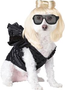Pop Diva Pet Costume