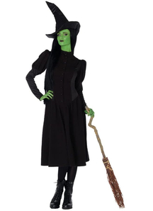 Broadway Witch Adult Costume