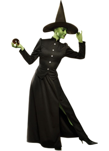 Witch Classic Adult Costume