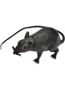 5 Inch Rat