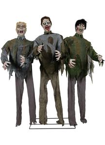 Animated Zombie Horde