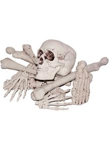 Bag Of Bones - 13761
