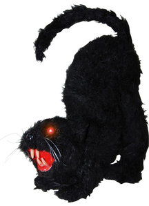 Black Cat With Lights And Sound