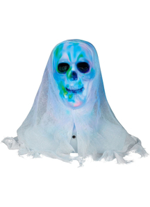Lightshow Skull Bust