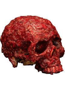 Meat Skull