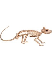 Rat Form Skeleton