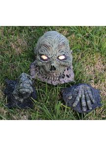 Rotten Corpse Head.