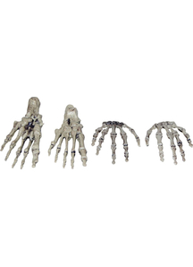 Skeletal Hands And Feet