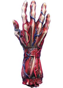 Skinned Right Hand