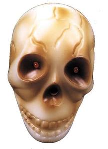 Vincent Living Skull