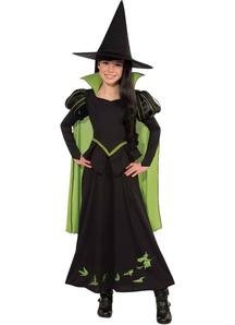 Wicked Witch Wiz Of Oz Child Costume - 16469