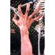 Ultimate Monster Hands Flesh